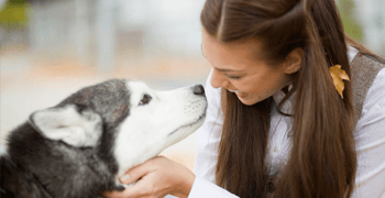 Veterinary Hospital Costa Mesa - Dog and Woman