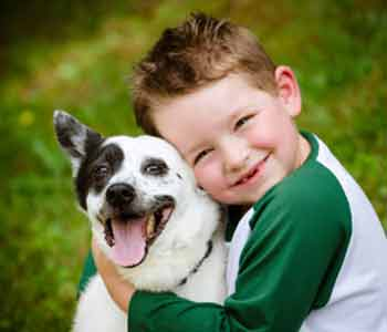 Dr. Rand Spongberg provides pet vaccinations for Irvine area dogs and cats