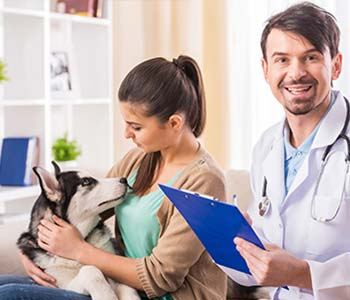 Affordable Vet Care Huntington Beach CA