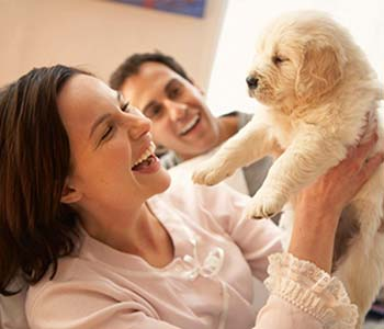 Animal Care Clinic Newport Beach CA