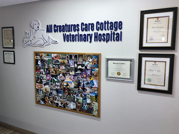 All Creatures Care Cottage Veterinary Hospital Office - Image 08