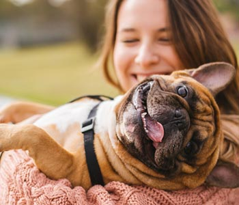 Benefits for pet-owners in Costa Mesa, CA area